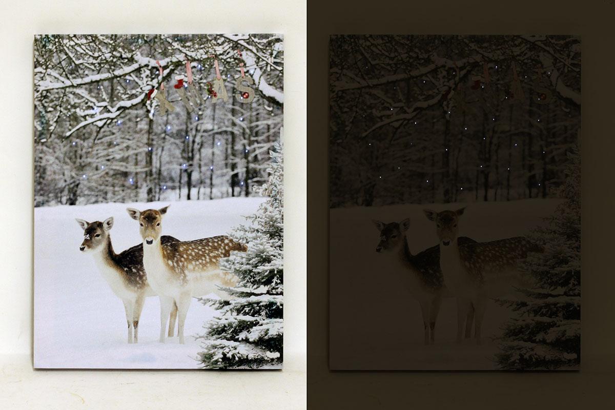 Autronic - Nástěnný obraz, svíticí - LED, zimní motiv - BD511