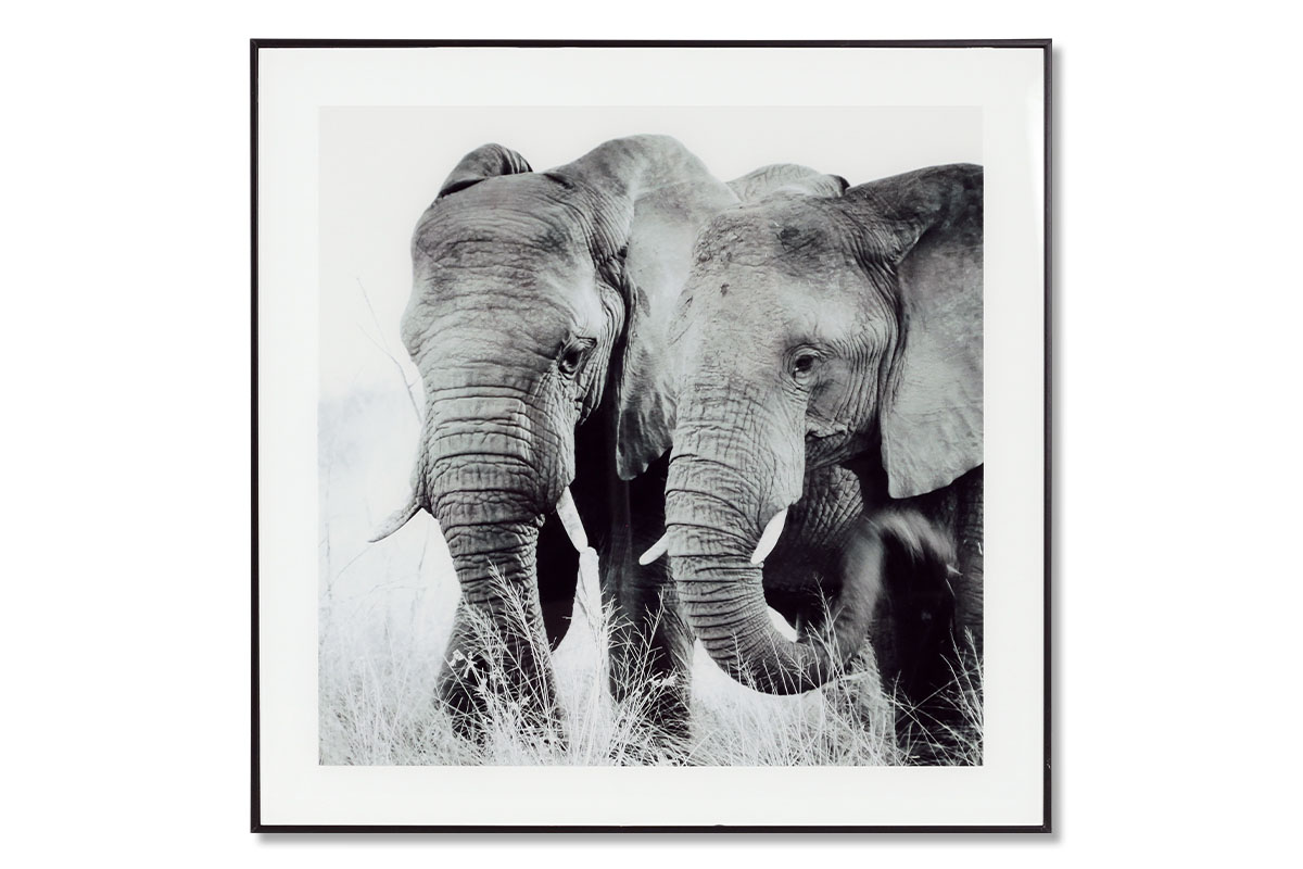 Autronic - Obraz skleněný 50x50 cm - HS064