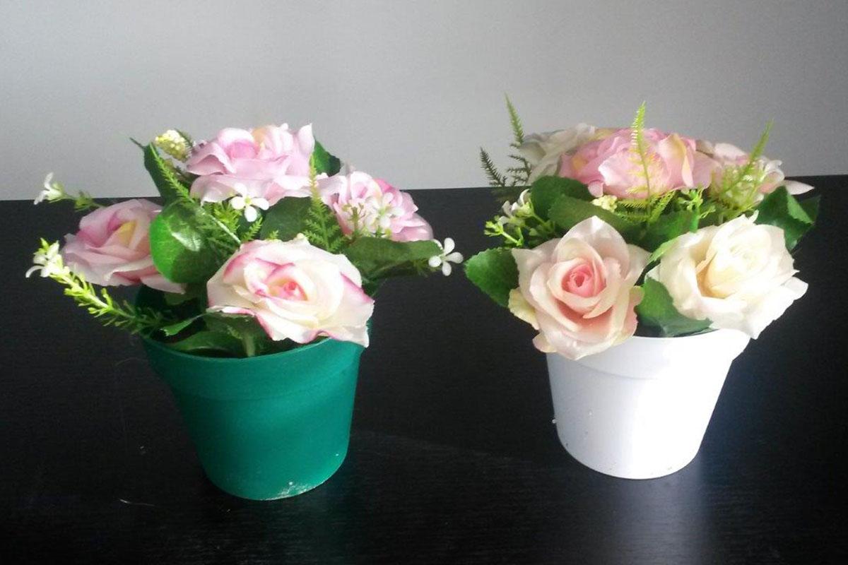 Růže - puget v plastovém obalu, mix barev