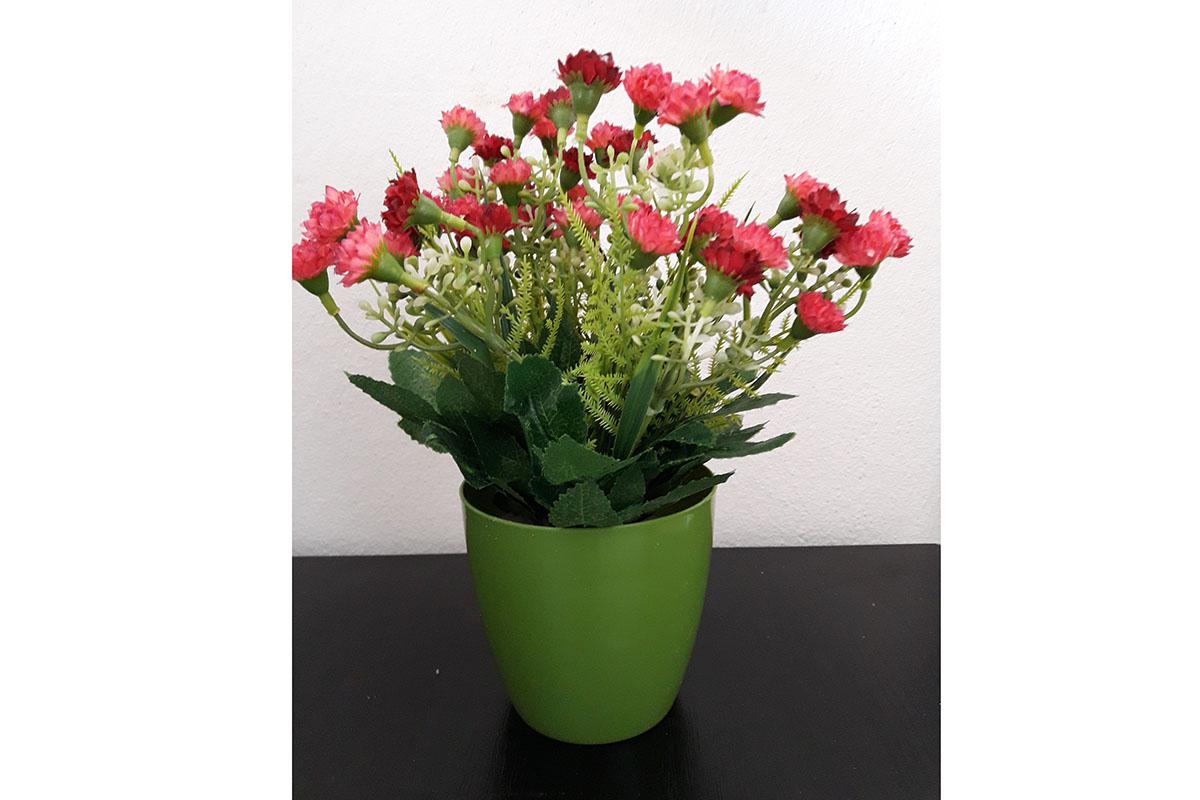Mini karafiáty v plystovém květináči, barva červená