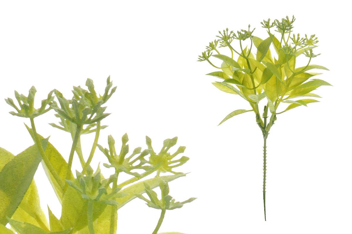 Trs, zelená barva (baleno ve svazku 6ks)