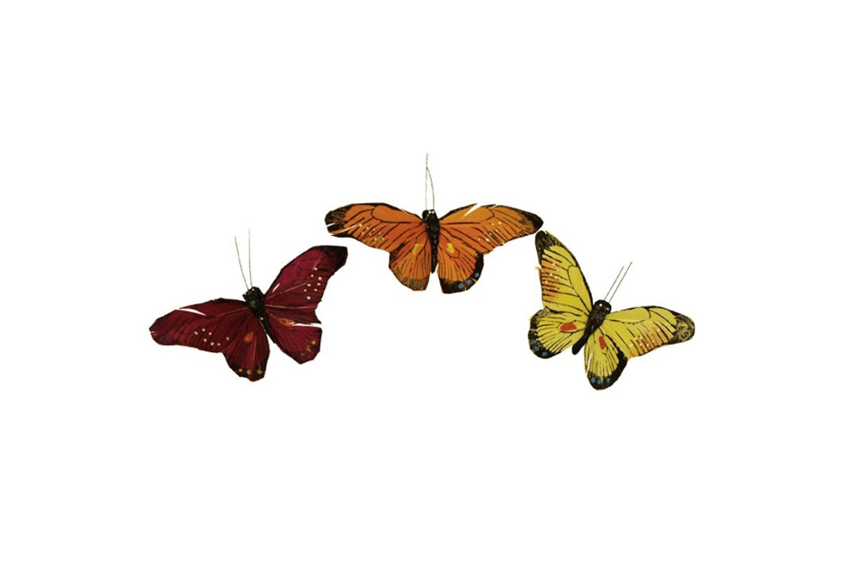 Motýľ so štipcom, cena za 1 ks, 12ks v krab.