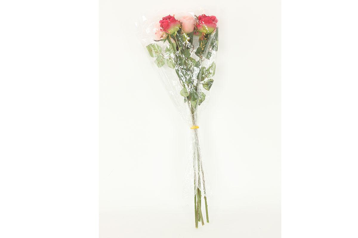 Puget 5ks růží