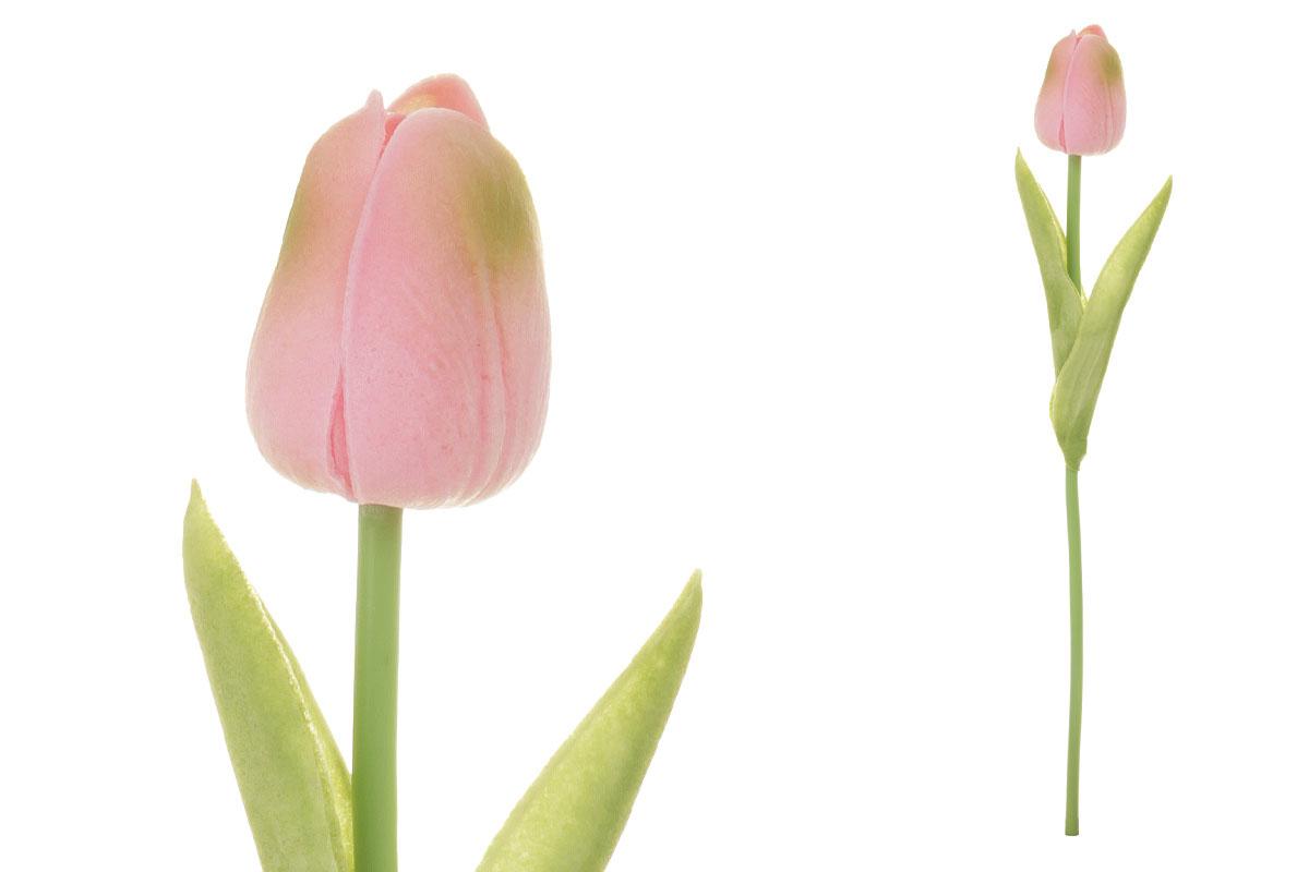 Umelý kvet penový, tulipán mini, farba ružovo-zelená