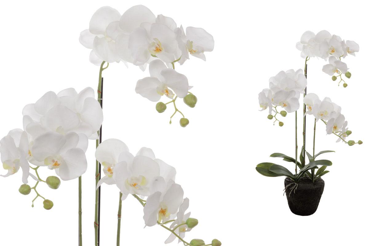 Velkokvětá orchidea, 3 stonky, barva bílá, umělá květina v balu.