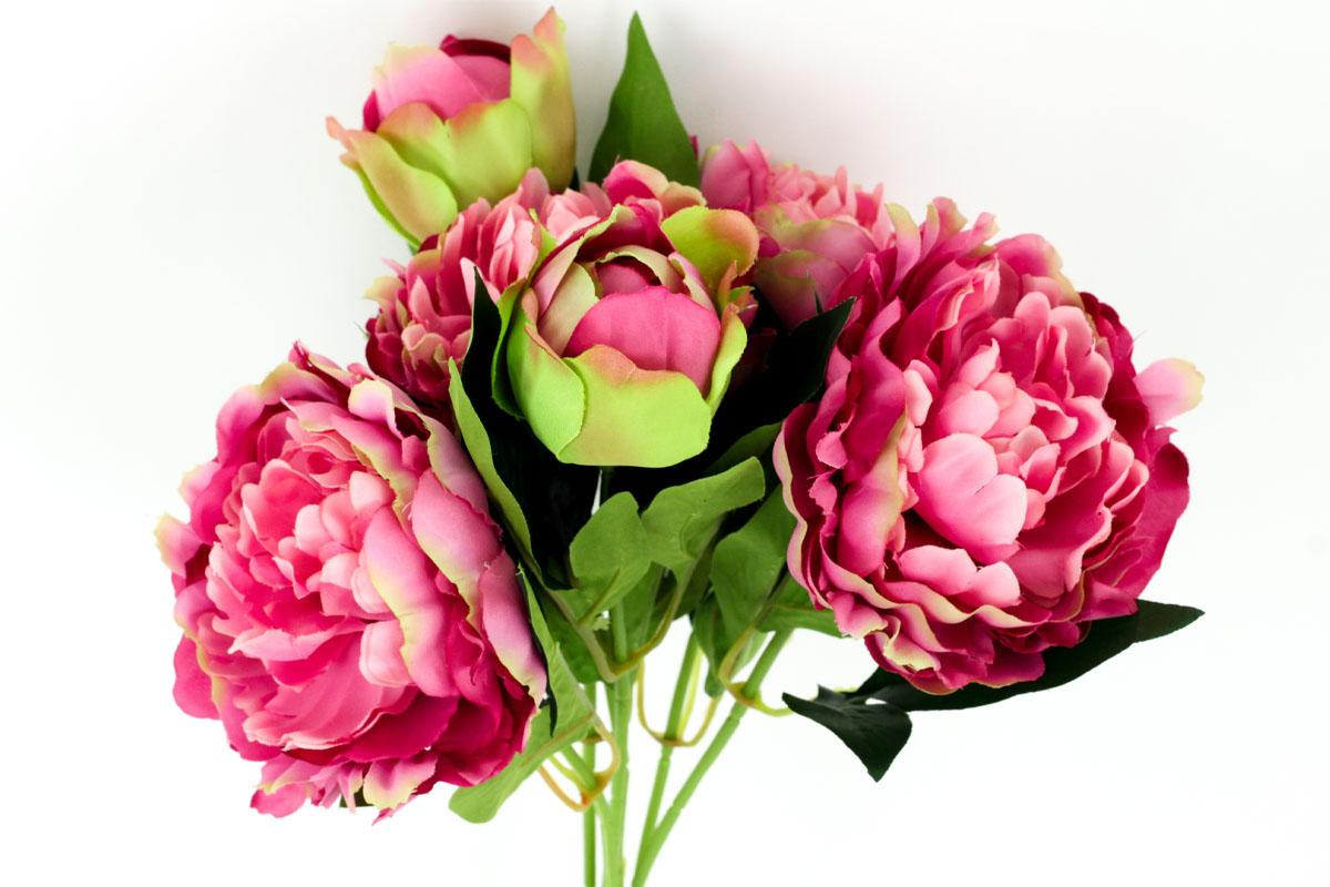 Kytica pivoniek, farba tmavo ružová