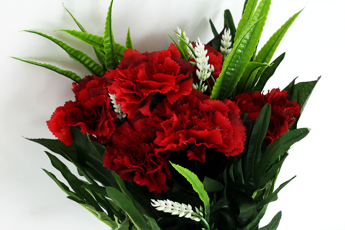 Kytica karafiátov, farba červená