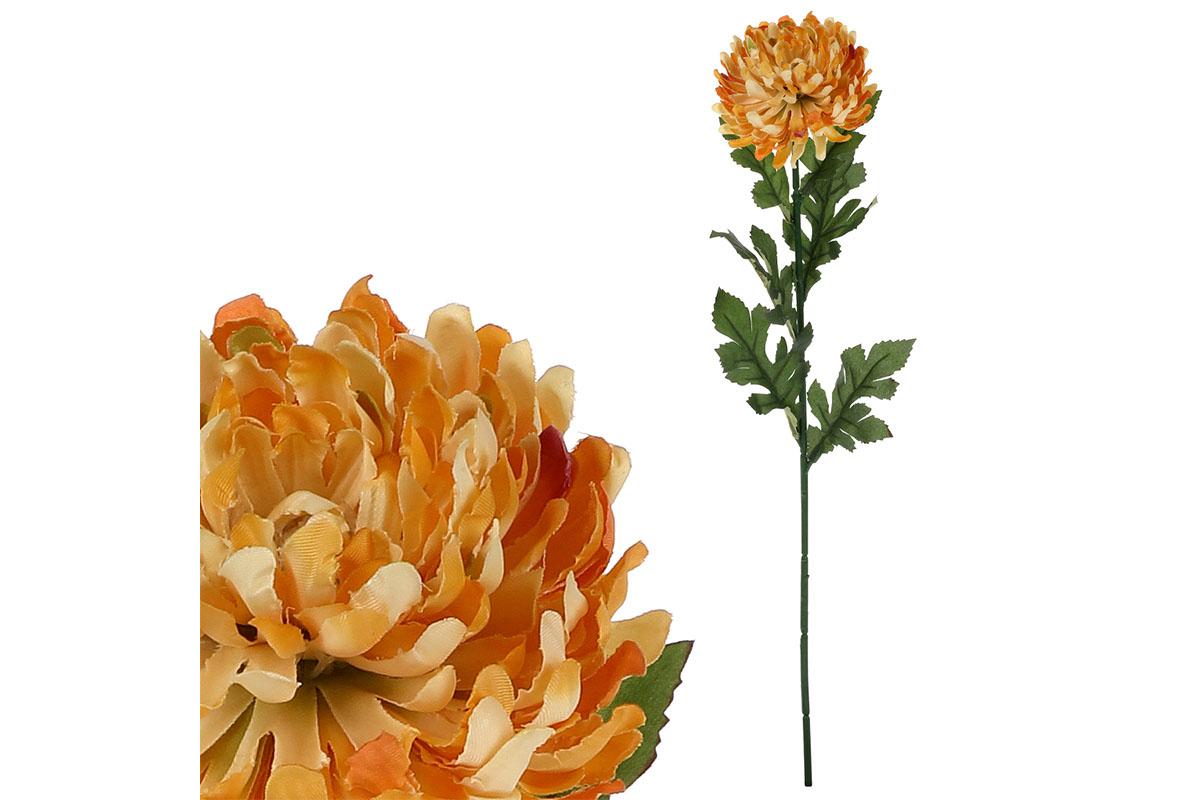 Chryzantéma velkokvětá, jednohlavá, barva žlutá.