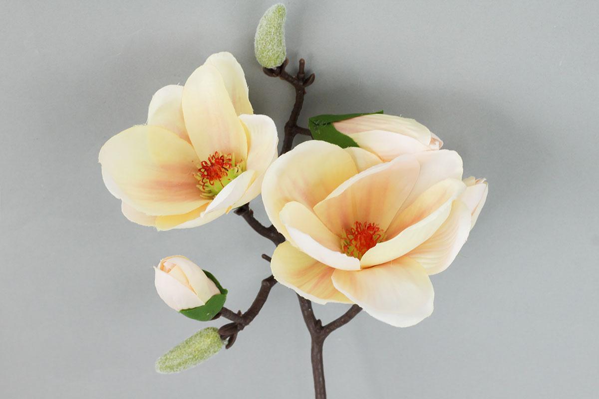 Magnolie, umělá květina , barva krémová