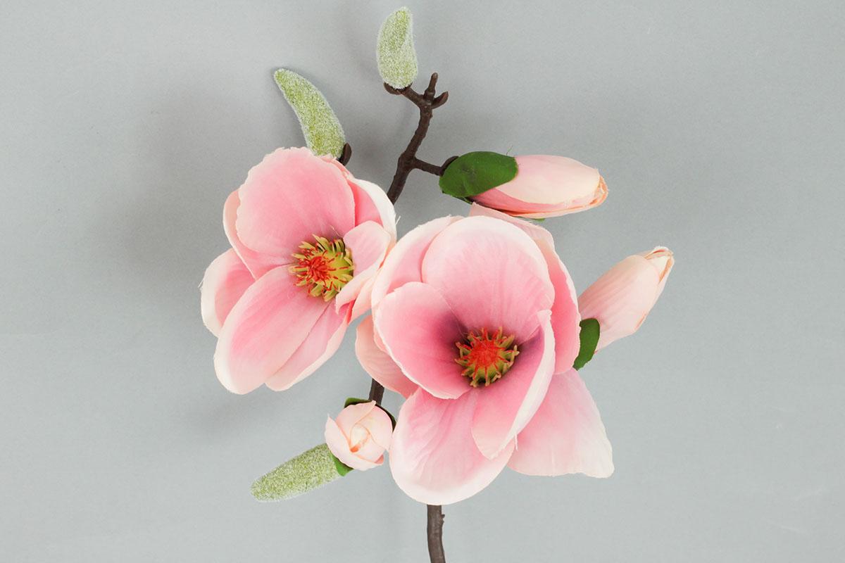 Magnolie, umělá květina , barva