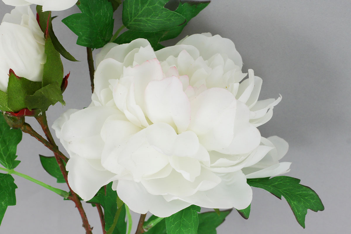Pivoňka, umělá květina, barva bílá