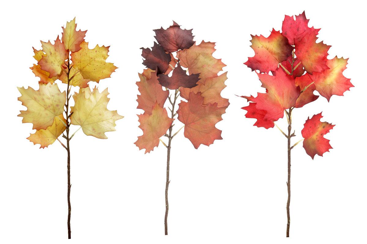 Přízdoba, podzimní