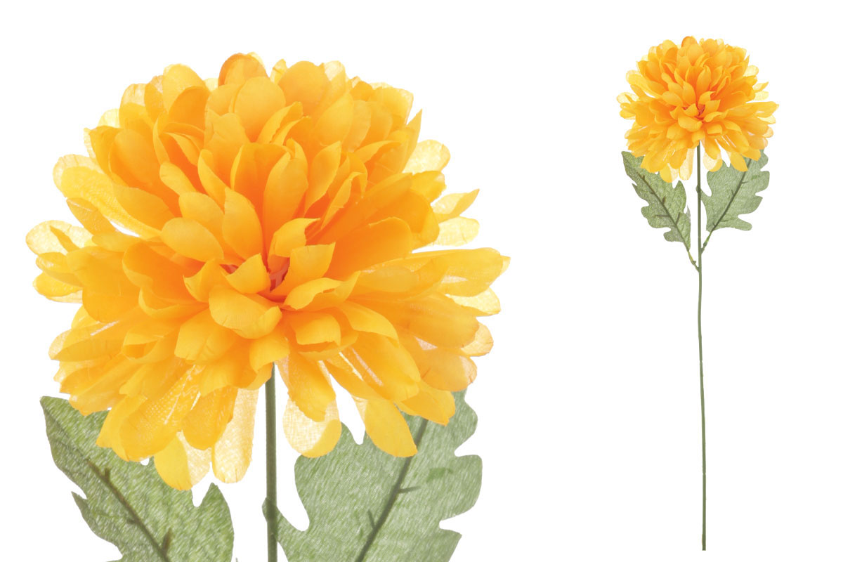 Chryzantéma jednohlavá, barva sv. žlutá