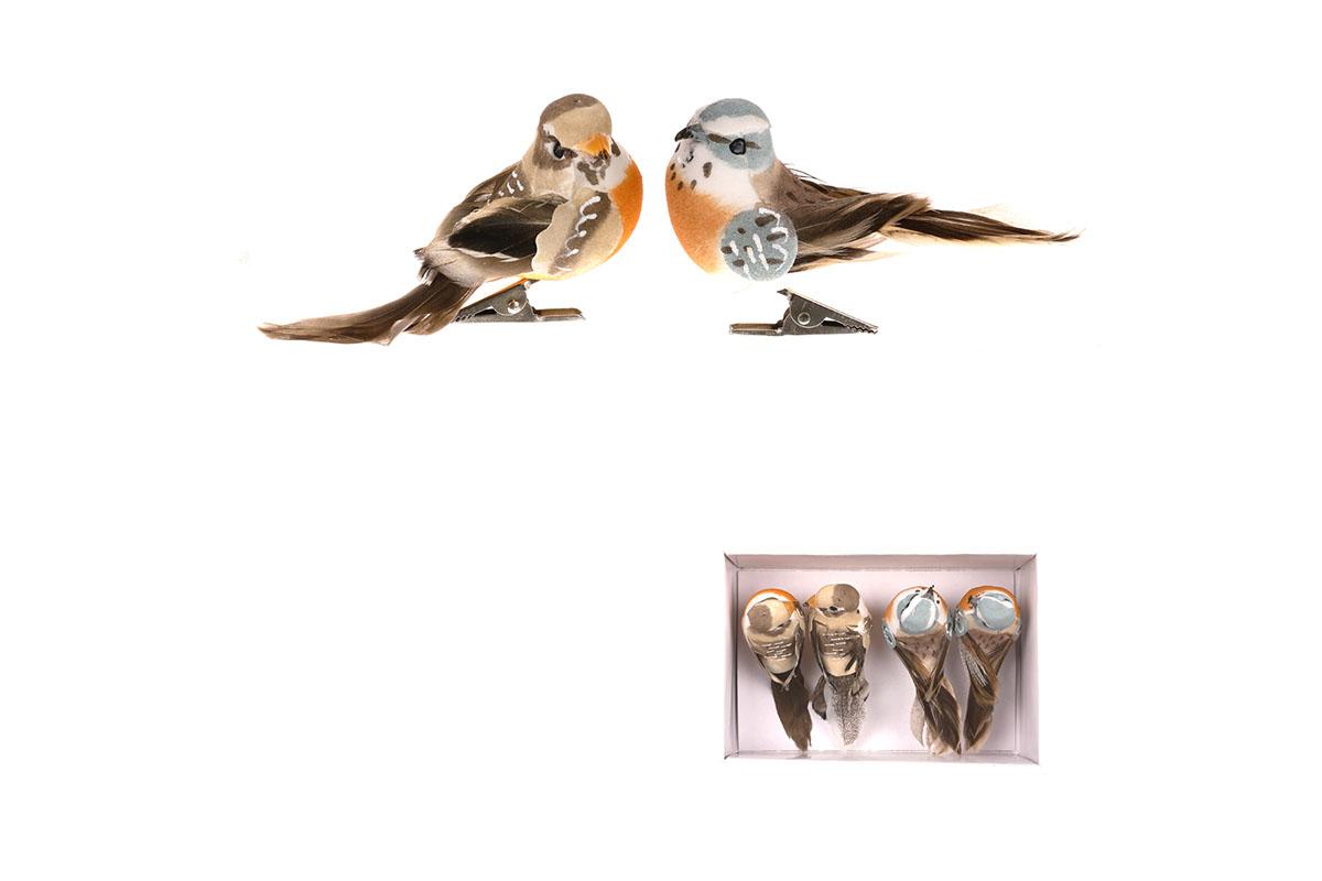 Ptáček s klipem, 4ks v krabičce, mix barev, cena za 1 krabičku