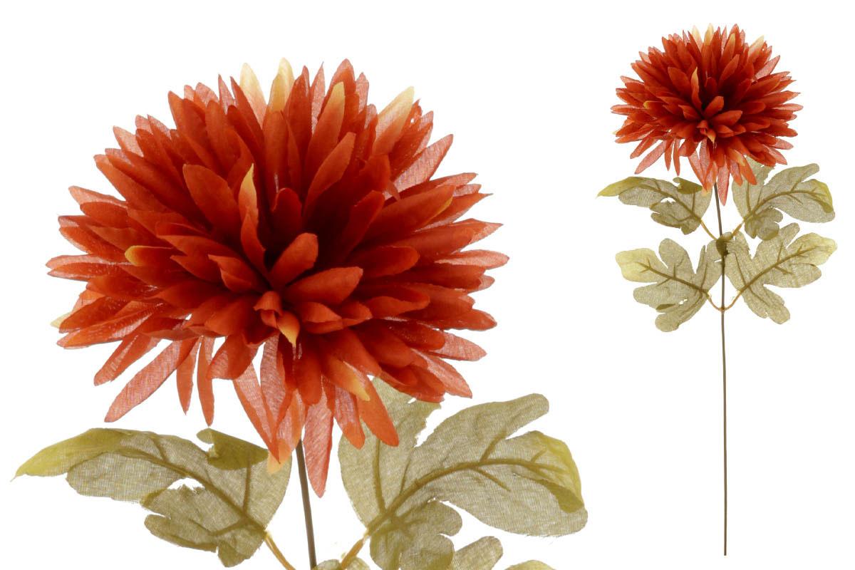 Chryzantéma 1-hlavá, hnědá.