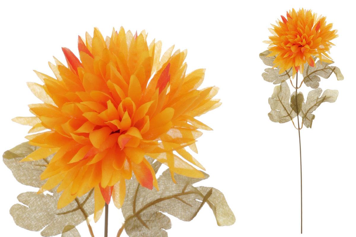 Chryzantéma 1-hlavá, žluto-oranžová