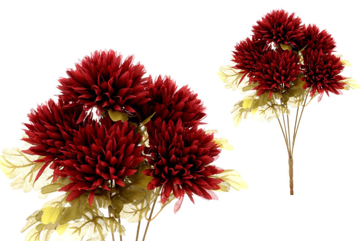 Chryzantéma puget,5-hlavá, bordó.