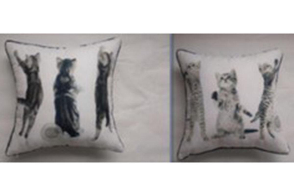 VAKÚŠ S VÝPLŇOU, foto z oboch strán, 3 mačiatka