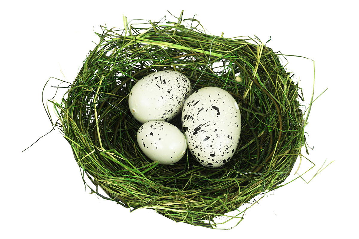 Hnízdo s vajíčky, dekorace z révového proutí s kovovem