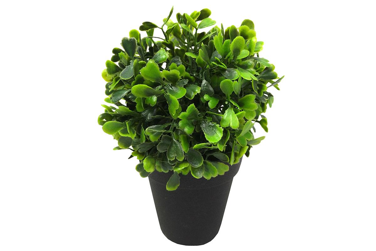 Koule ze zelených lístků, umělá květina v plastovém květináči
