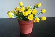 Umělá květina. Krokus - puget v plastovém obalu