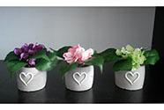 Umělá květina. Hortenzie v betonovém obalu, mix barev