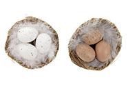 Vajíčka umělá v proutěném hnízdě, mix 2 barev.