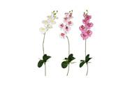 Orchidea motýlí, mix barev. Květina umělá.