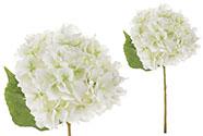 Hortenzie, barva bílo-zelená. Květina umělá.