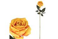 Růže, barva žlutá, samet.