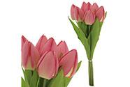 Puget tulipánů, 7 květů, barva růžová.