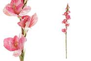 Gladiola, barva růžová. Květina umělá.