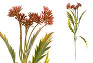 Květina umělá plastová.  Barva červená temná. Cena za 1ks(ve svazku 12ks).