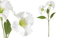 Durman, barva bílá. Květina umělá.