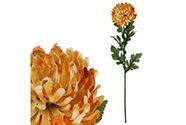 Chryzantéma velkokvětá, jednohlavá, barva oranžová žíhaná.