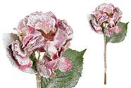 Hortenzie, barva starorůžová ojíněná. Květina umělá.