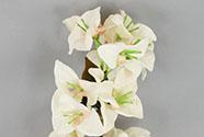 Bugenvilie, barva krémová. Květina umělá.
