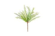 Větvička zelená ojíněná, umělá dekorace