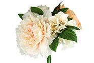 Růže a pivoňky, puget, barva smetanová. Květina umělá.