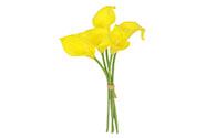 Kala, 5 kusů ve svazku, barva žlutá. Květina umělá.