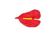 Anturie, barva červená, Květina umělá vazbová. Cena za balení 12 kusů
