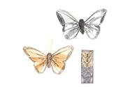 Motýl s klipem, 6ks v krabičce, barva krémová a šedá s glitry, cena za 1 krabičk