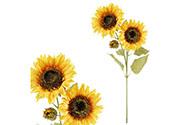 Slunečnice. Květina umělá.