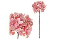 Hortenzie v růžovo-meruňkové barvě, se třpytkami.