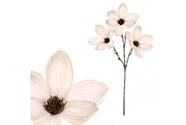 Magnolie v krémové barvě, s glitry.