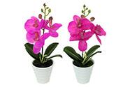 Orchidea v keramickém květináči - mix stř. a tm. Růžová