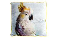 Polštář s výplní. Papoušek.