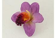 Orchidea. Květina umělá vazbová.  Cena za balení 12 kusů
