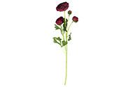 Ranunkulus 5 hlav, barva purpurová. Květina umělá.