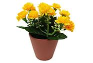 Karafiáty v keramickém květináči, barva žlutá. Květina umělá.